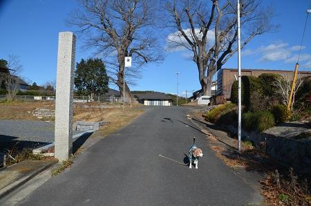 20200104旧・稲田小学校01
