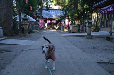 20200109東金日吉神社13