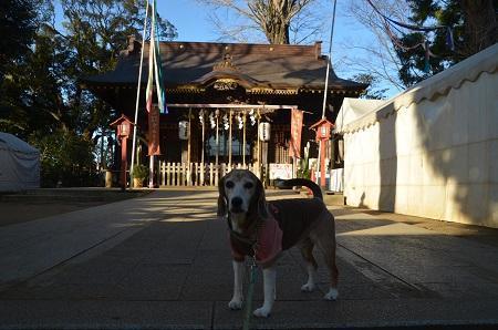 20200109麻賀多神社06