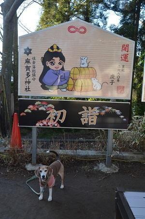 20200109麻賀多神社15