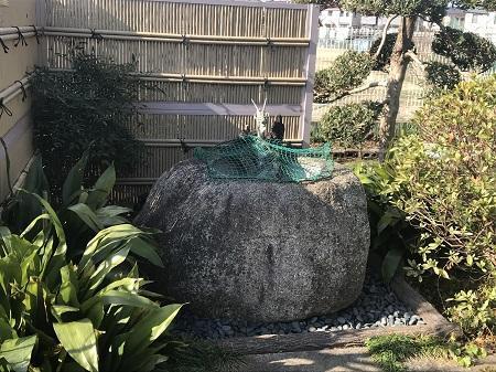 20200114大和八幡神社02