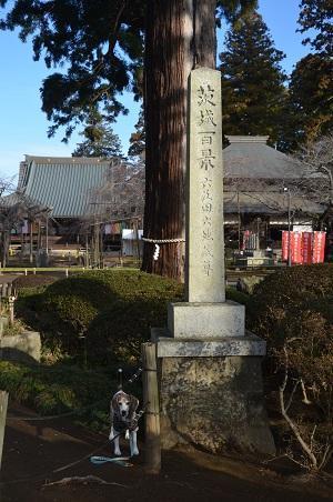 20200125六地蔵寺03