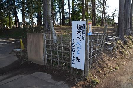 20200125六地蔵寺35