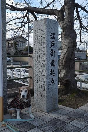 20200125竈神社15