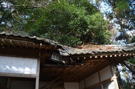 20200125水戸神社12