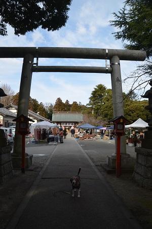 20200125吉田神社10