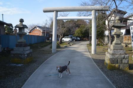 20200125香取鹿島神社03