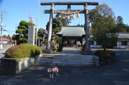 20200130埴生神社16