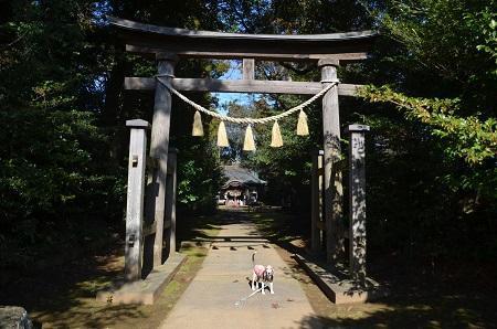 20200130熊野神社04