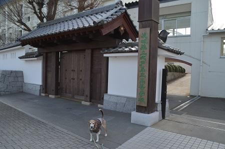 20200125水戸城址30
