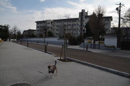 20200125水戸城址34