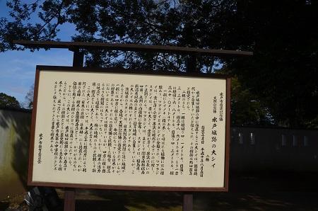 20200125水戸城址38