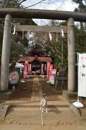 20200204冨里香取神社03