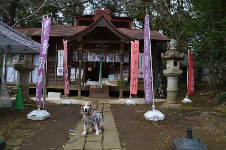 20200204冨里香取神社11