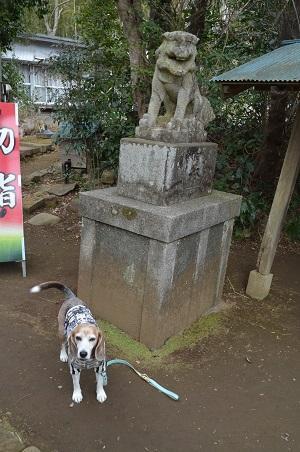 20200204冨里香取神社08