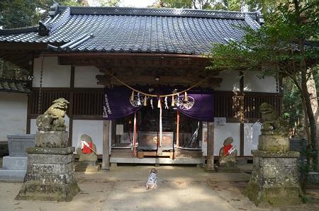 20200204日吉神社18