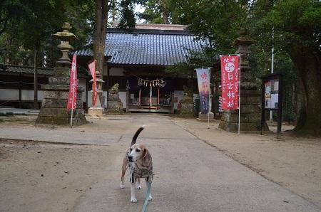 20200204日吉神社14
