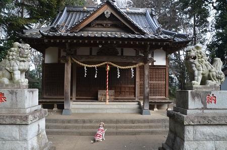 20200210桑原神社20