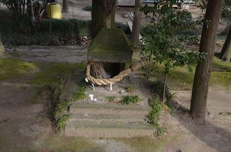 20200210厳島神社14