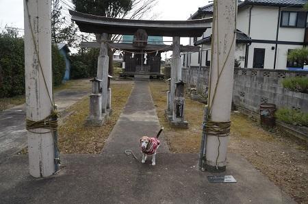 20200210淡島神社02
