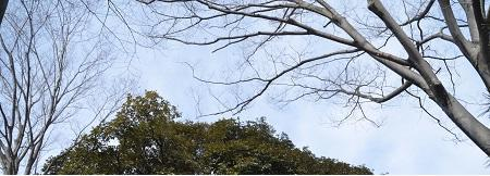 20200210宗道神社22