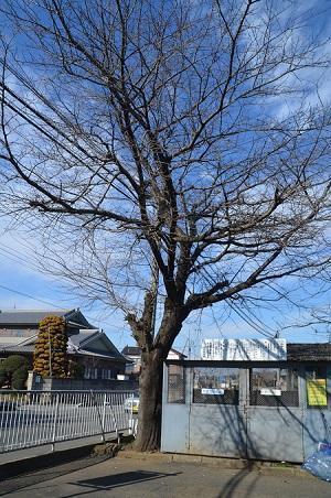 20200210大木分校07