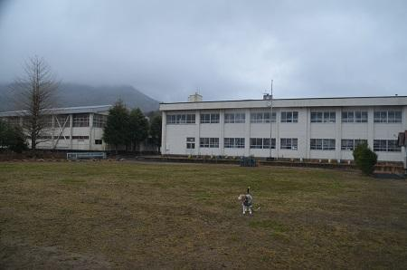 20200217紫尾小学校23