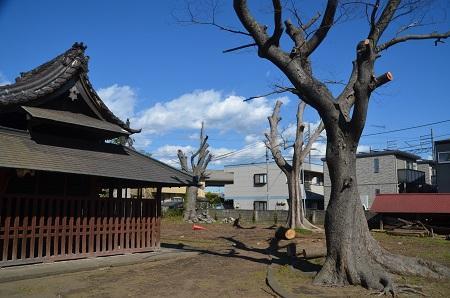 20200218稲荷神社24