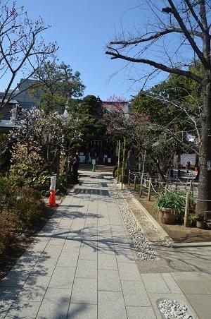 20200221鳩森八幡神社06