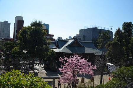 20200221鳩森八幡神社22