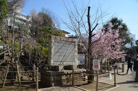 20200221鳩森八幡神社36