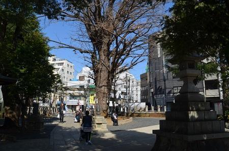20200221鳩森八幡神社39