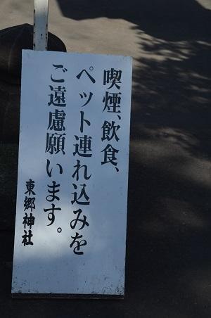 20200221東郷神社05