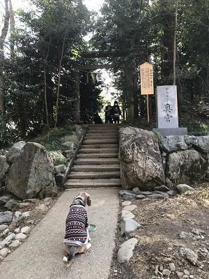 20200224香取神社25