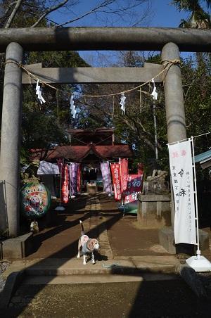 20200301冨里香取神社01
