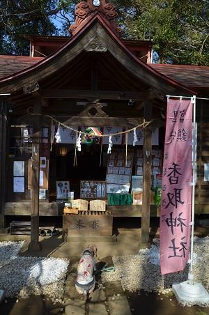 20200301冨里香取神社08
