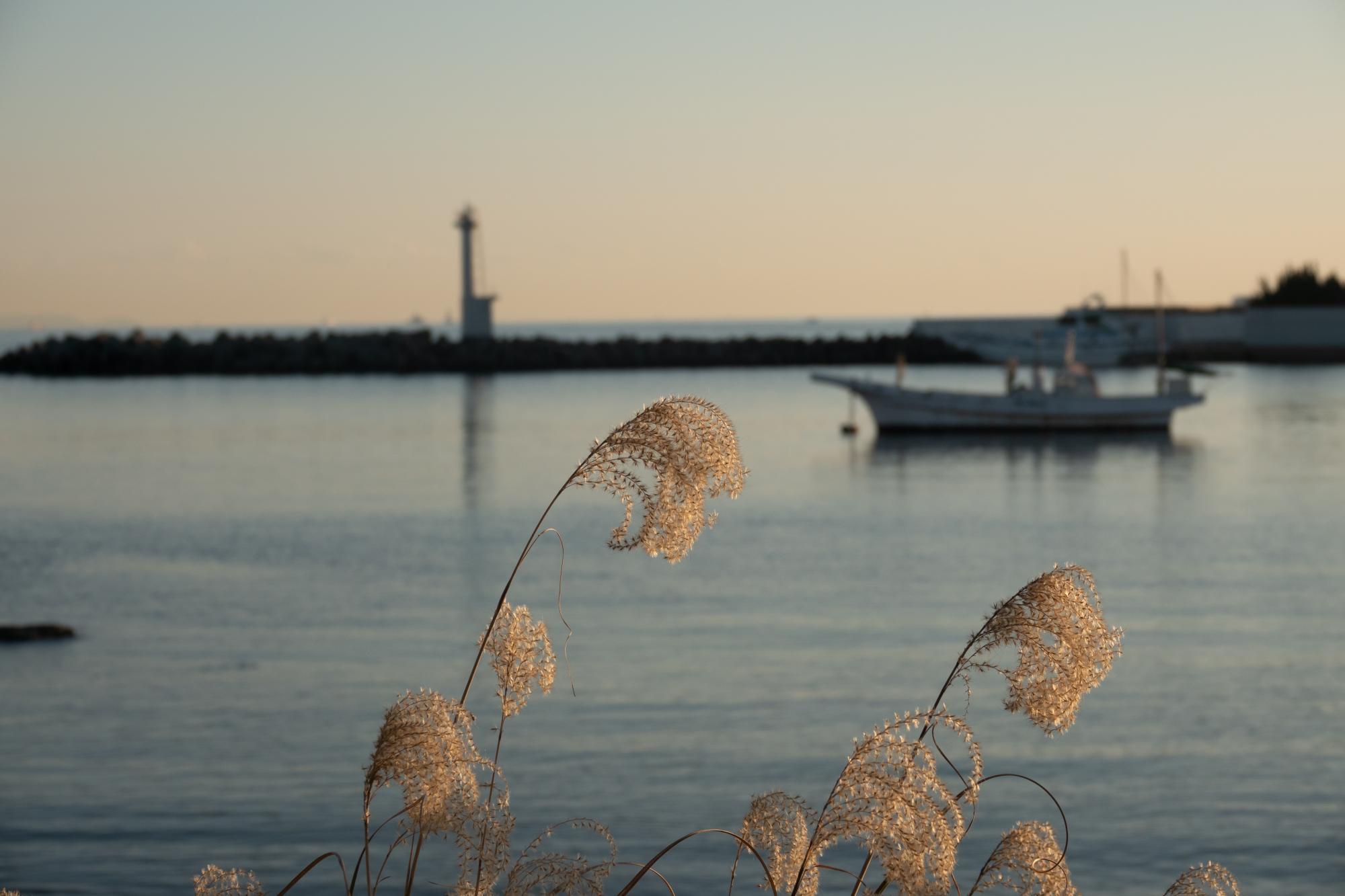 20191106-鴨居漁港