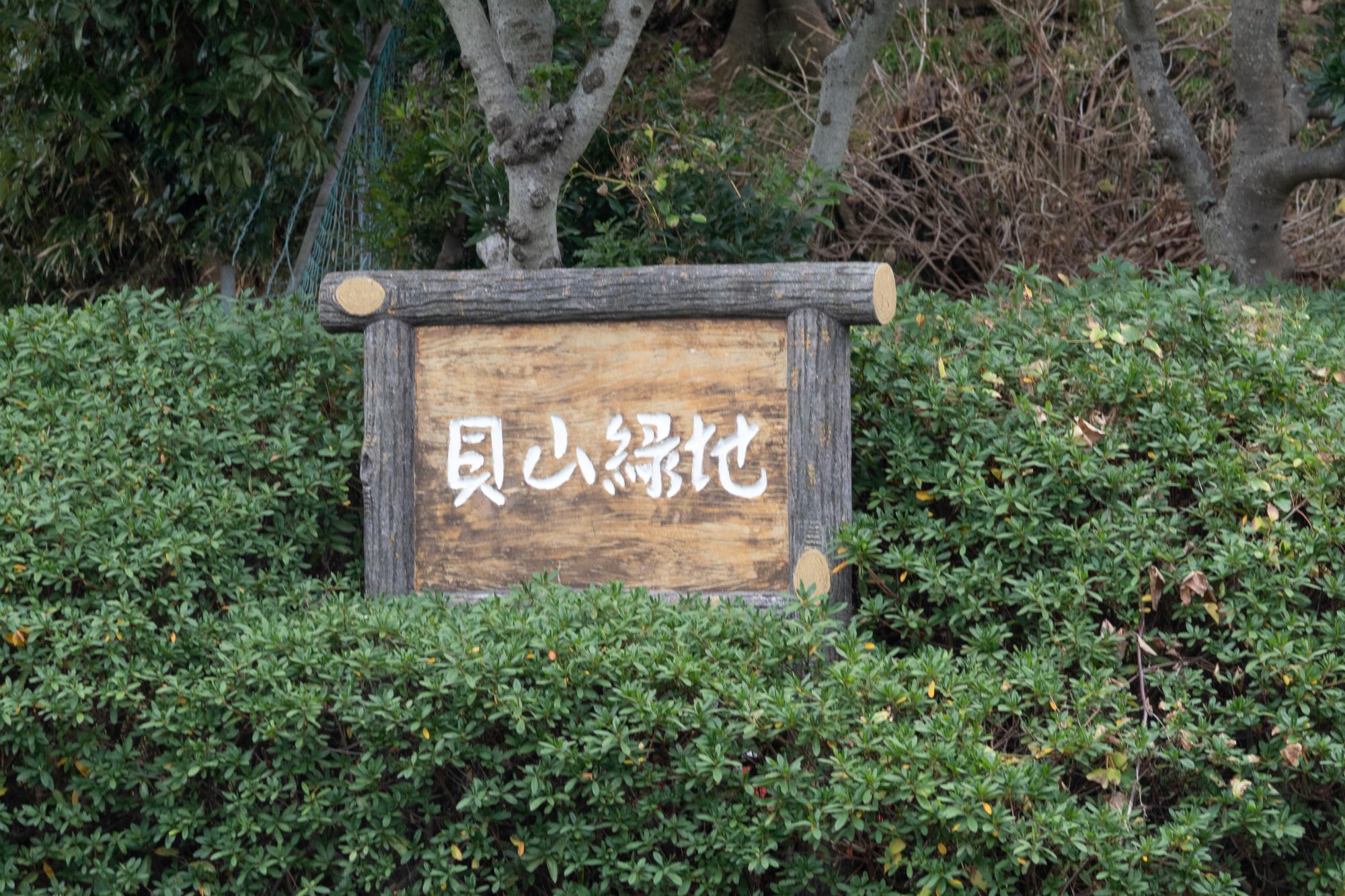 20200124-貝山緑地公園