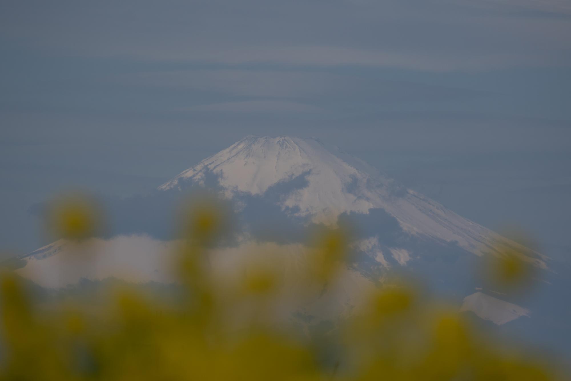 20200212-富士山