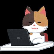 工事中(猫