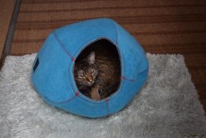 フェルト猫ベッド