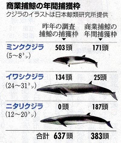 商業捕鯨の年間捕獲枠19.7.5水産庁資料より