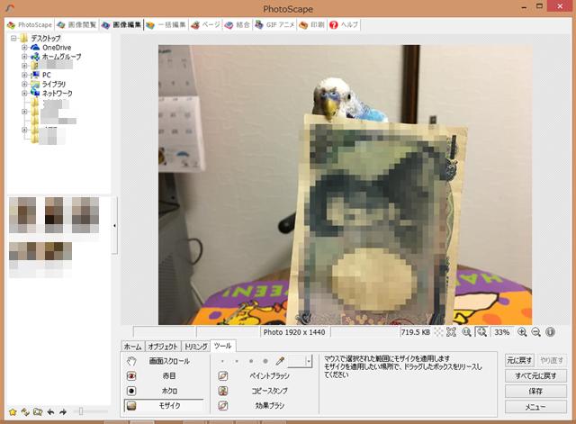 インコ セキセイインコ 空色のセキセイ珠霞 空色インコ 空色のセキセイ Corel PaintShop Pro 写真編集 photoscape