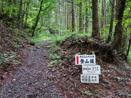 yahiko197150004.jpg