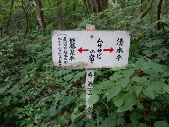 yahiko197150026.jpg
