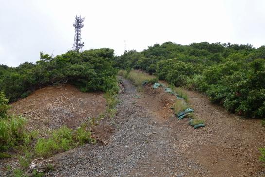 yahiko197150046.jpg