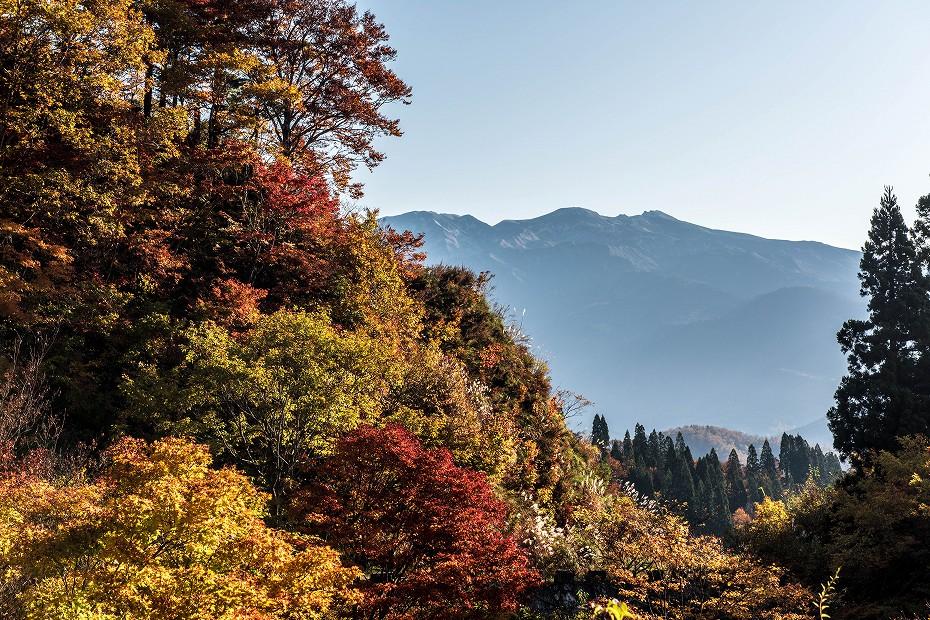 2019.11.10西山から白山眺望 1 (14)