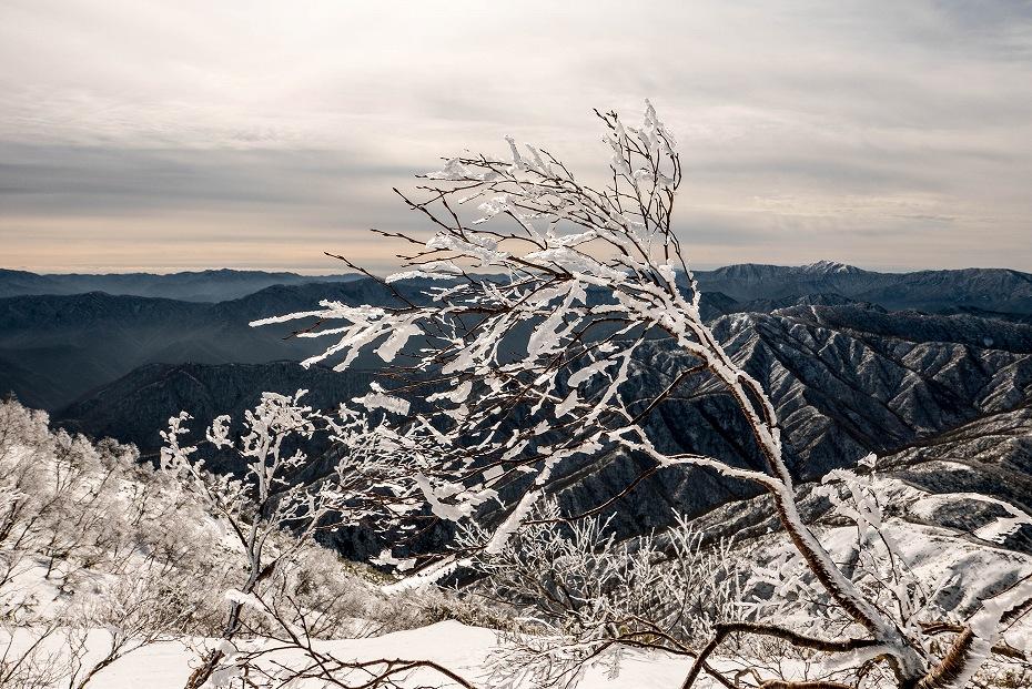 2020.01.25荒島岳 (17)