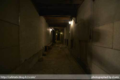 島根県 松江市 美保関 福間館 夕食 和食 かに料理 海鮮 刺身 美味い 宿泊予約 23