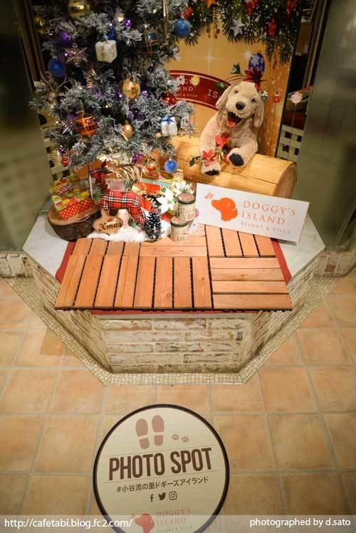 千葉県 八街市 小谷流の里 ドギーズアイランド レストラン 夕食 朝食 リゾートホテル 宿泊 予約 犬 ペットOK 写真 13